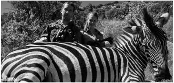 cf-erika-zebra-IMG_0368