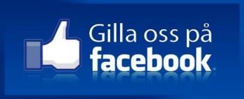 Gilla & följ GodsJakt.se på facebook